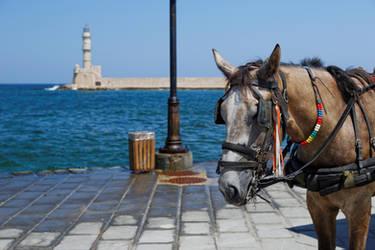 Horse of Chania by Oaken-shield