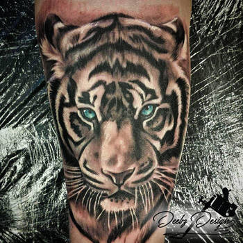 Tiger Portrait by KieranMorris