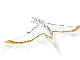 Rodan sketch by sphenaphinae