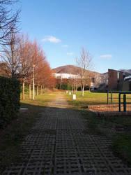 Winter afternoon - Walk in the university by SkullYukiru369