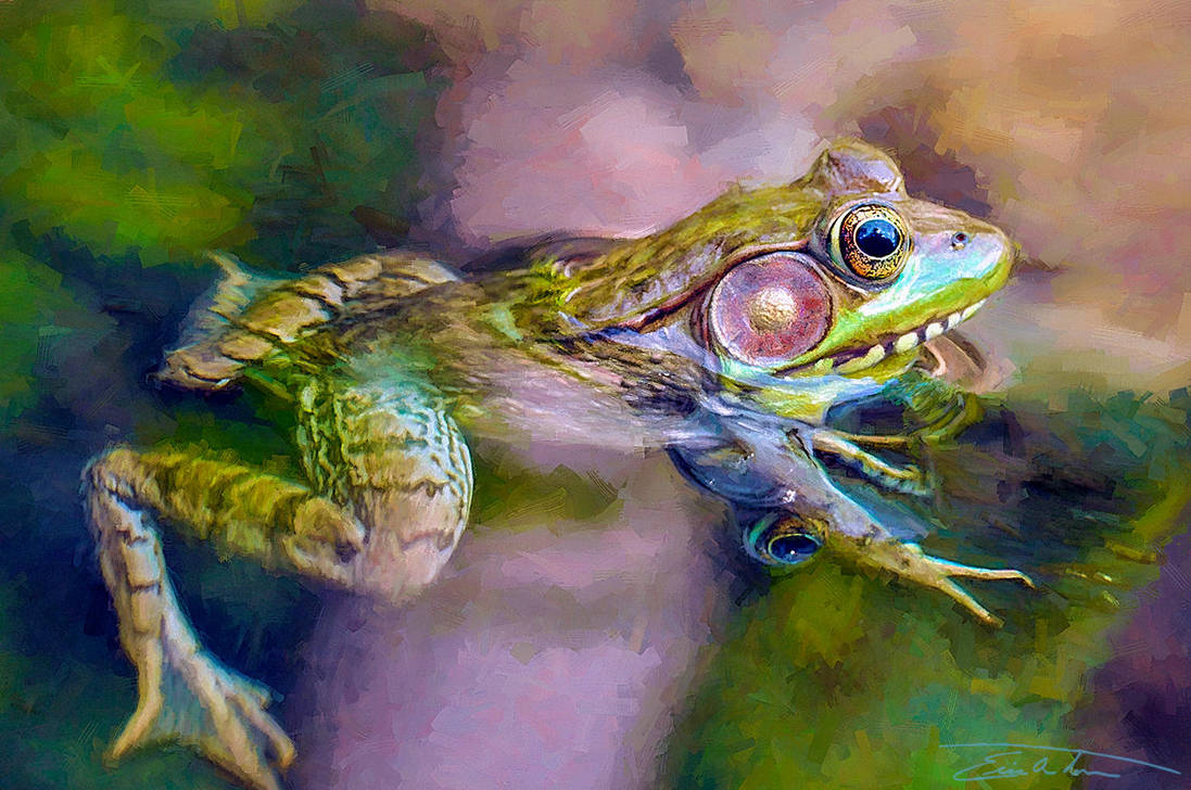 Frog In The Creek by EricTonArts