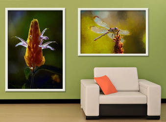 Nature Images (on wall) by EricTonArts