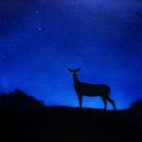 Watcher by Andibi