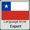 Chilean Spanish language level EXPERT by TheFlagandAnthemGuy