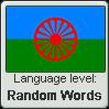 Roman language level RANDOM WORDS by TheFlagandAnthemGuy