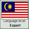 Malay language level EXPERT by TheFlagandAnthemGuy