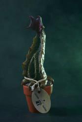 Crypto Botany - Drosera Dentatisdebent by AlfredParedes