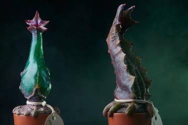 Crypto Botany - Serecenia Inmannumortis by AlfredParedes