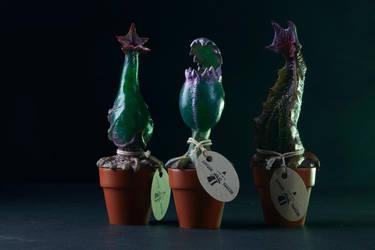 Crypto Botany by AlfredParedes