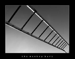 The Monkey Bars by esoteric663