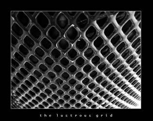 The Lustrous Grid by esoteric663