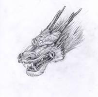 Chinese Dragon by marielleroyseth