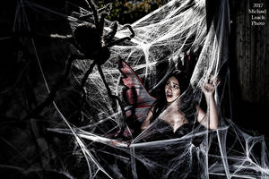 MLP NatalieU Faerie in Spider Web Oct21 7126 by MichaelLeachPhoto