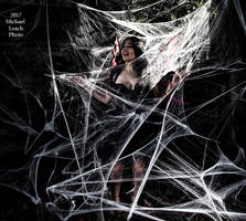 MLP Natalie U Faerie trapped in Web Oct21 7004 by MichaelLeachPhoto