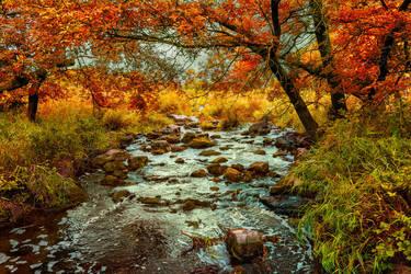 Autumn Creek by Dimentichisi