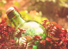 Pretty much like you in bottle... by GloomySisterhood