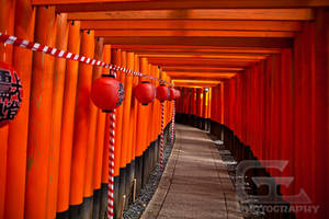 Fushimi Torii path by NanoRoux