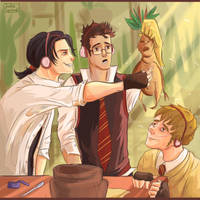 Marauders on the Herbology lesson. by JacksSquirrel16