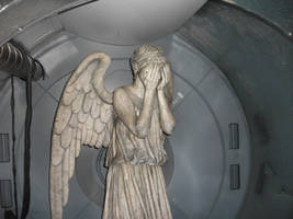 Weeping Angel by xmodernlove