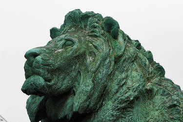 Stoic Winter Lion by MoreThanNothing