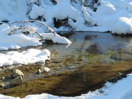 A White Brook by Nayamo