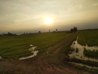 the train from bangkok by bironicheroine