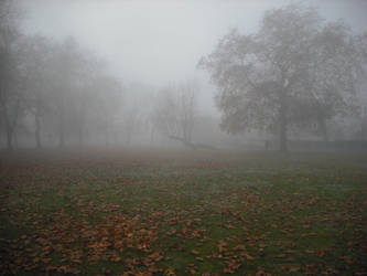 Fog on the Common by betterwatchit