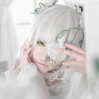 Rozen Maiden by umibe