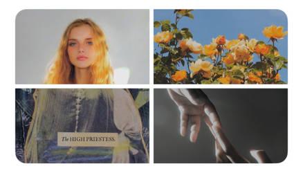 Twitter moodboard ~ Selene Lindgren by ElyKiresu