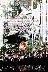 Digitalis purpurea by olieviya