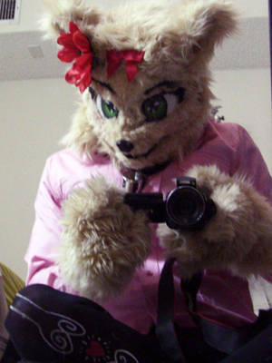 Introphaze cat fursuit pic 2 by IntroPhaze