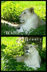 White Beauty by DolphyDolphiana