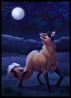 Desert Night by DolphyDolphiana