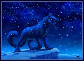 Snowy Night by DolphyDolphiana