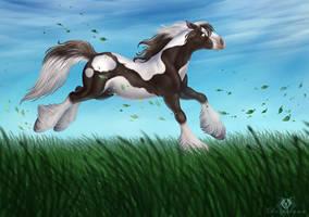 Free Like The Wind by DolphyDolphiana