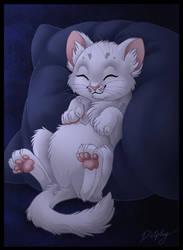Fluffy Kitty by DolphyDolphiana
