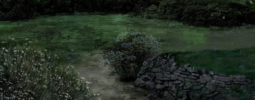 grass by meiwren