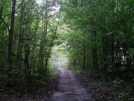 Path by Healer-Guy