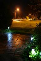 Magical Lights by Healer-Guy