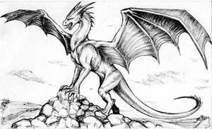 Random Dragon by Jianre-M