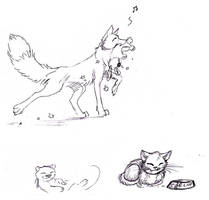Foxes, Kittens, and Otters... Oh My! by Jianre-M