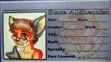 Alchemist Fox-Boy by Jianre-M