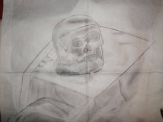 Skull sketch. by doomboy911