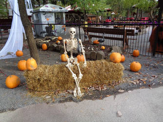 Skeleton in the Pumpkin Patch by creepsome