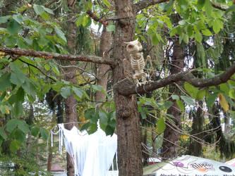 Skeleton Owl by creepsome