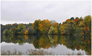 Autumn mirror by Daywish