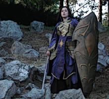 Lady Warrior -elven style- by ElusiveKite