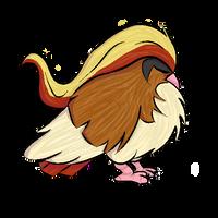 018. Pidgeot by Kina-Maaka