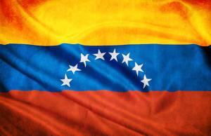 VENEZUELA FLAG BANDERA by paundpro