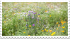 wildflower stamp by hearthstoneadopts